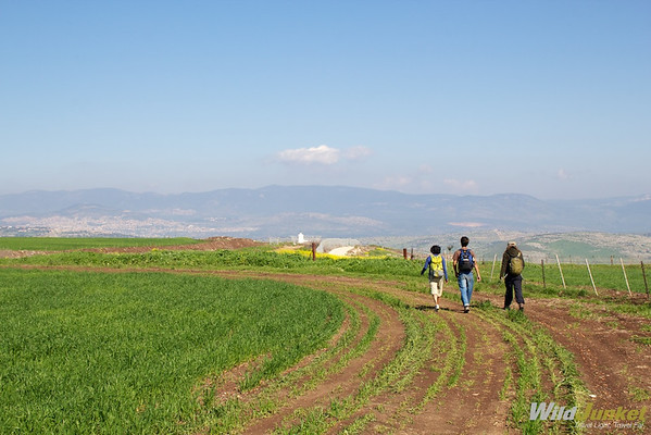kibbutz lavi chemin de jésus israël