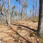 Mine Hill, Devils Den, Auburn NH: Third Excursion - 2021 8