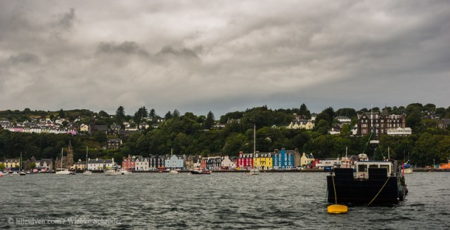 The colorful houses of Tobermory