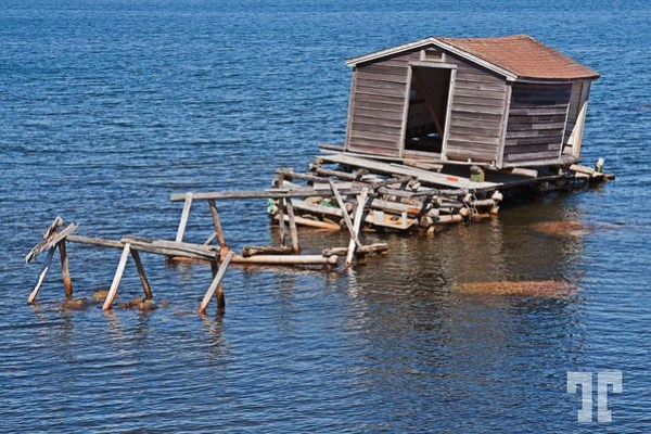 Weathered floating fishing shack in Twillingate, Newfoundland