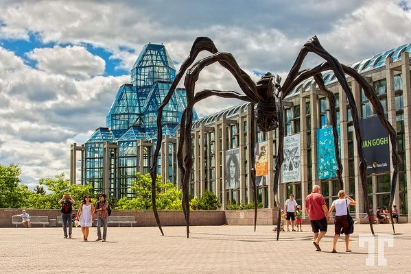 Maman the spider at the Art Museum in Ottawa, Canada