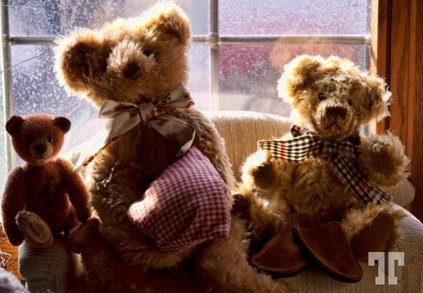 Toys: Teddy-bears Germany by Tatiana Travelways