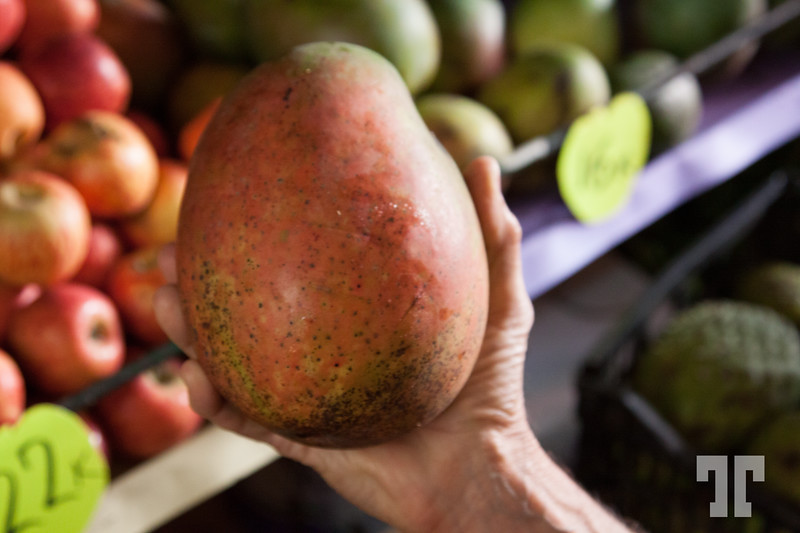 Huge Mango at Tequila market, Mexico