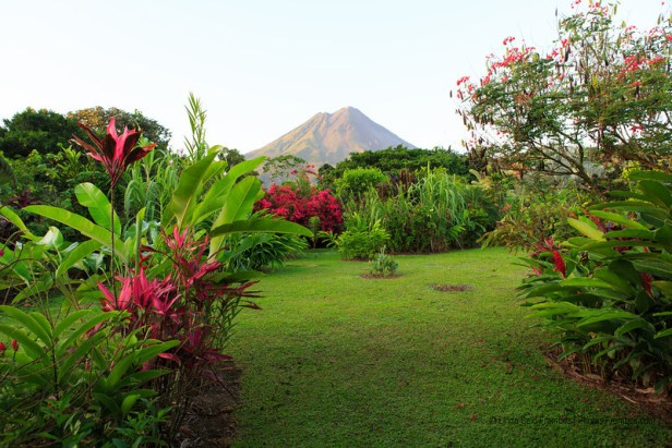 The view of Arenal Volcano from the back porch of our room at Volcano Lodge.