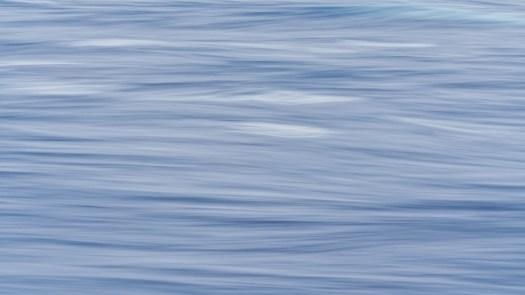 Oscar's Swells