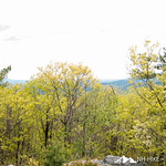Rattlesnake Mountain 7