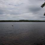 Rocky Point @Lake Massebesic 8