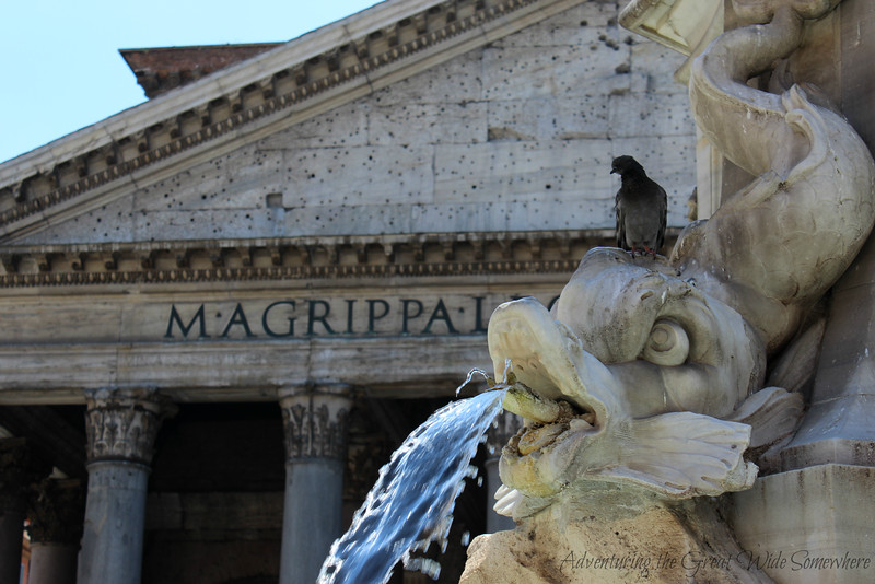 A pigeon sits on a dolphin water spigot on the Fountain of the Pantheon in Rome, Italy