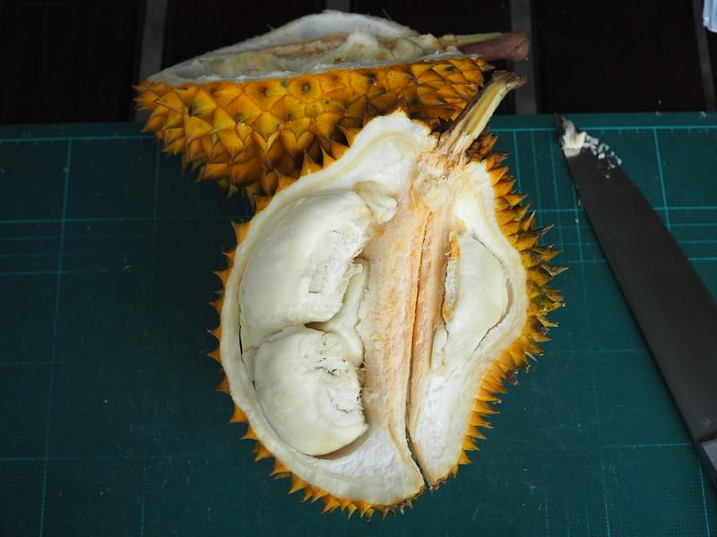 thai durian varieties