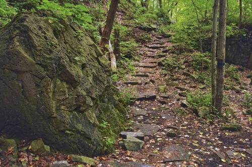 Niagara Falls Trails