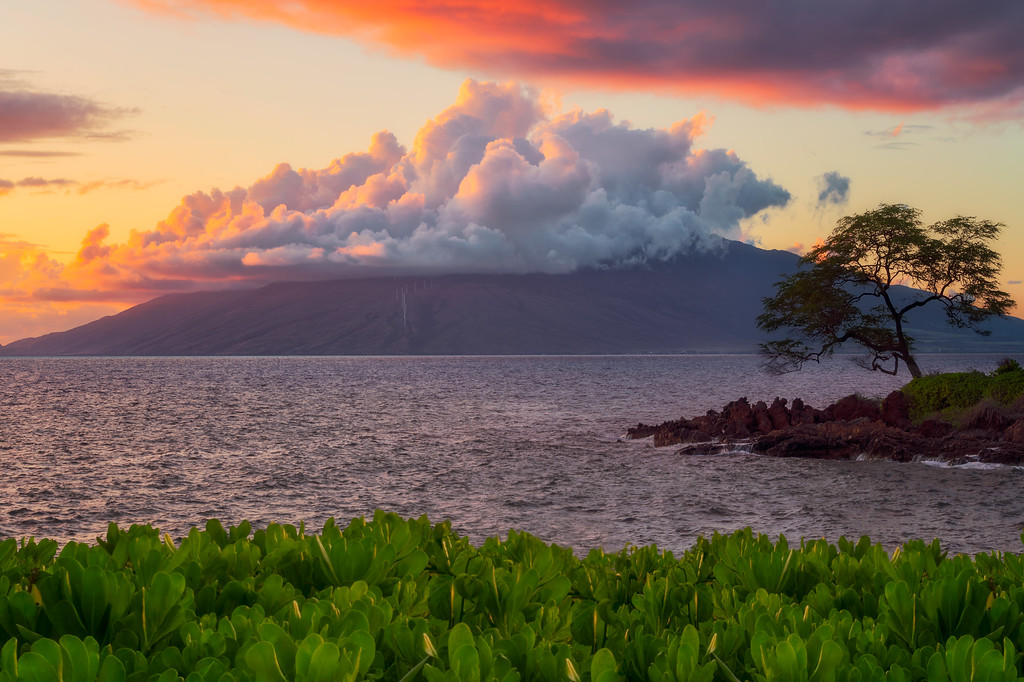 2019 in Pictures Wailea Hawaii