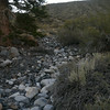 We started from Convict Lake, following this dry creek to connect with a dirt road on Tobacco Flat