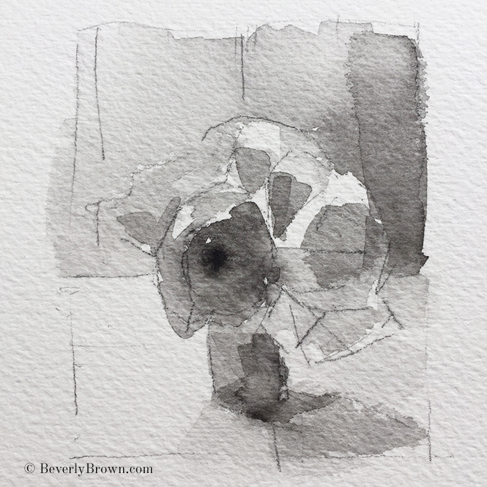 A quick black and white value study of a vase of ranunculus by artist Beverly Brown - www.beverlybrown.com