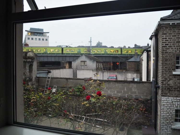 An urban view form a window with a few red roses on a unkempt vine in the foreground and an elevated commuter train in the distance.