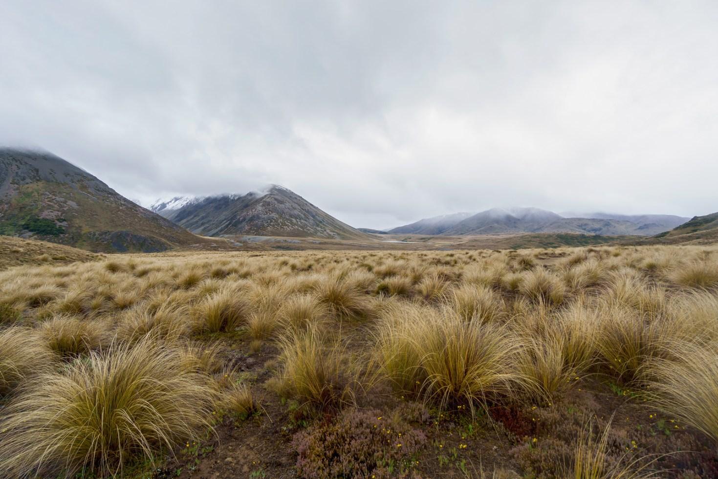 New-Zealand, Saint James Range