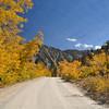 Colors on the road to North Lake