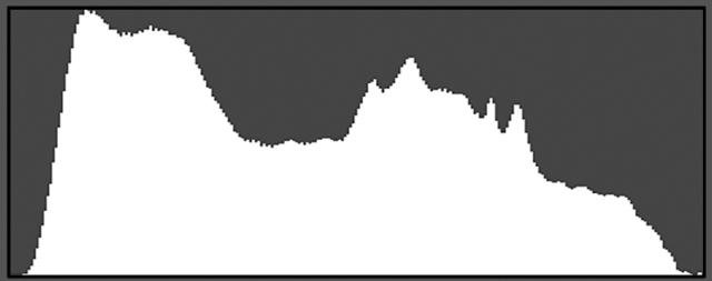 IdealGraph