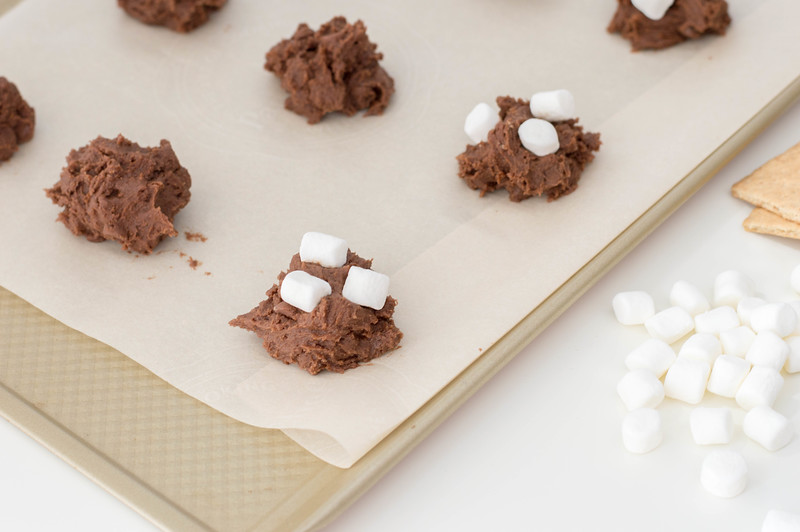 unbaked smores cookie dough