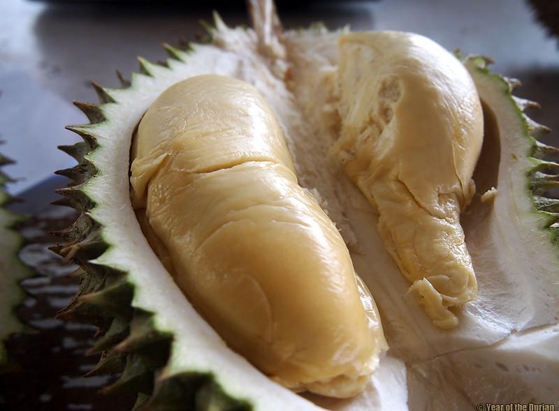 D78 Durian Poh Beng