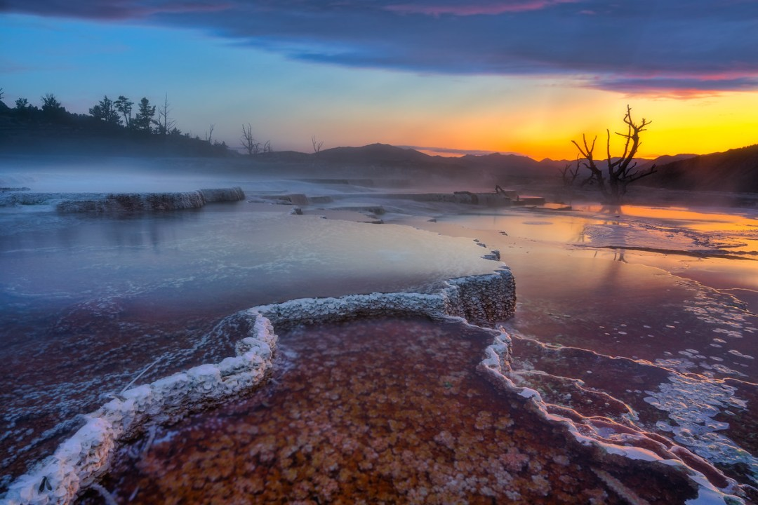 Mammoth Hot Springs Landscape Photography Yellowstone National Park