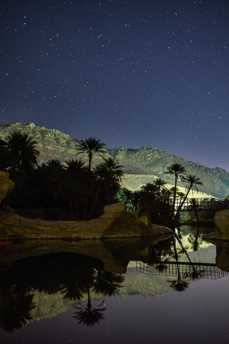 Nighttime in the oasis