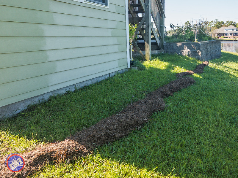 Debris Line in Our Backyard After Hurricane Florence (©simon@myeclecticimages.com)