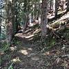 Heading up the Cone Peak trail