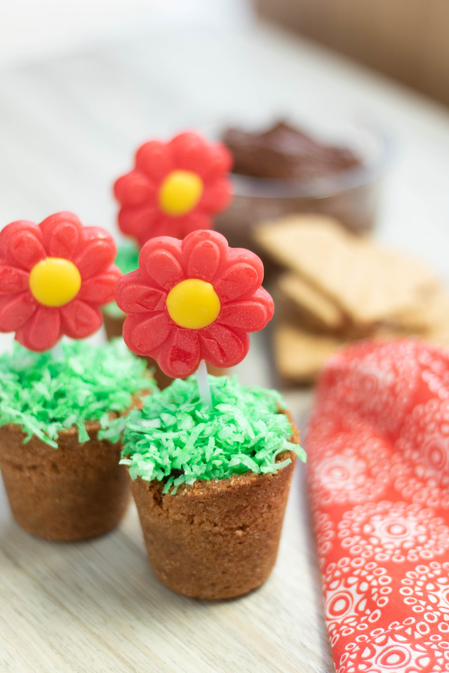 If you're looking for easy desserts for spring my Spring Flower Pots are like chocolate pudding cups with a cookie cup base. Delicious, beautiful, and easy!