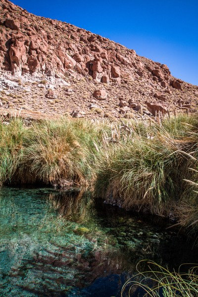Puritama Hot Springs, found in the Atacama Desert of Chile, is a series of 8 geothermal pools and the perfect place to relax! | www.eatworktravel.com