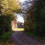 Last Fall Bike Ride