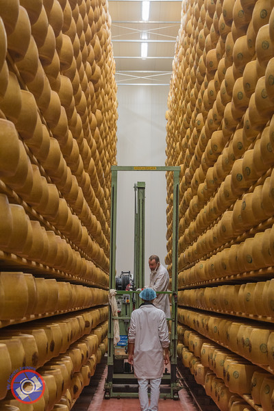 Just One Aisle in the Warehouse Containing Over 1.25 Million Pounds of Parmigiano Reggiano in Various Stages of Maturation (©simon@myeclecticimages.com)