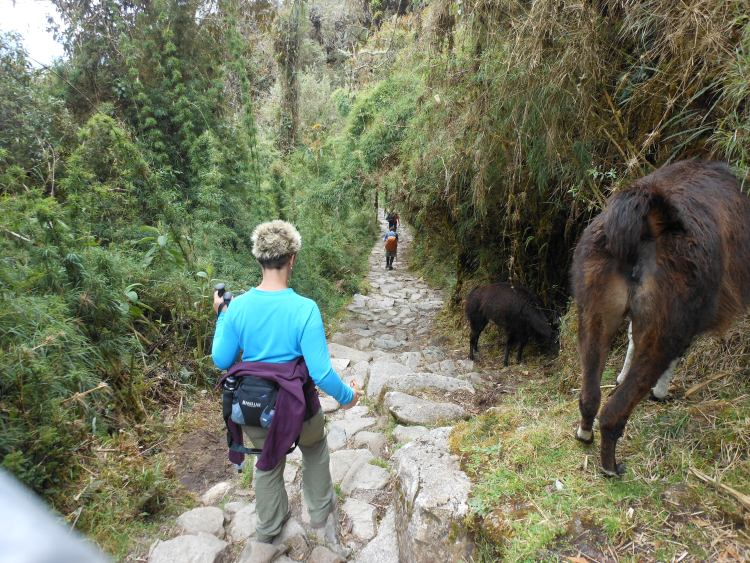 10 Tips for trekking to Machu Picchu in Peru from a hiking novice! | www.eatworktravel.com