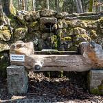 Tour to Burgwalden