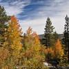 Rock Creek Fall Colors