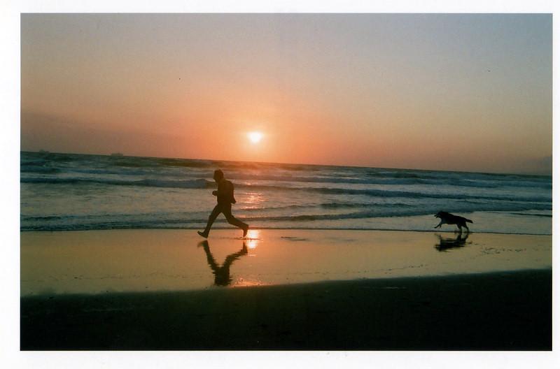 dog chasing man on beach