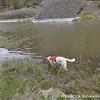 Aaaaaand he found the mud.