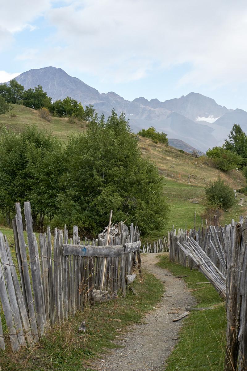 Path towards the cross