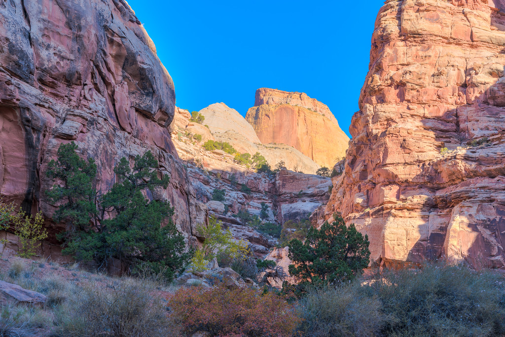 Pictures of Capitol Reef National Park Utah