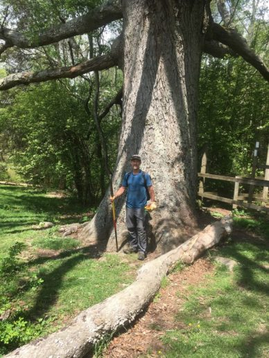 keffer oak appalachian trail clay bonnyman