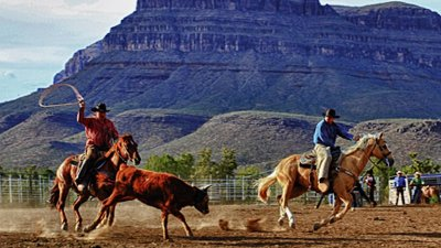 """Image result for cowboys in grand canyon"""""""