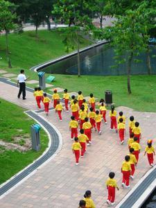 School Outing