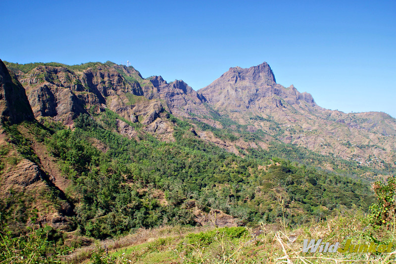 best things to do in Cape Verde - Cape Verde nature