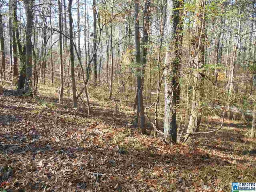 Property for sale at 333 E Oak Tree Dr E Unit 2A, Chelsea,  Alabama 35043