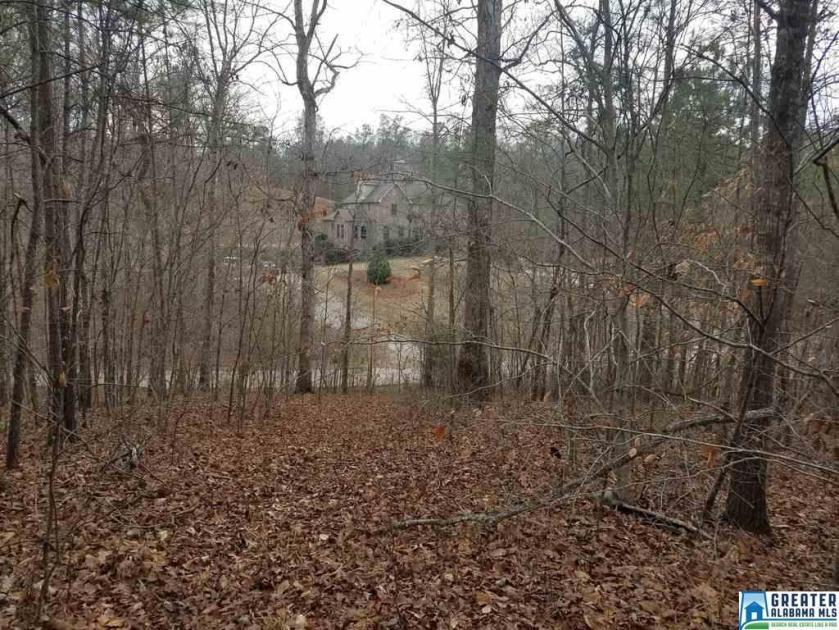 Property for sale at 24B Falls Creek Dr Unit 24B Falls Creek drive, Helena,  Alabama 35080