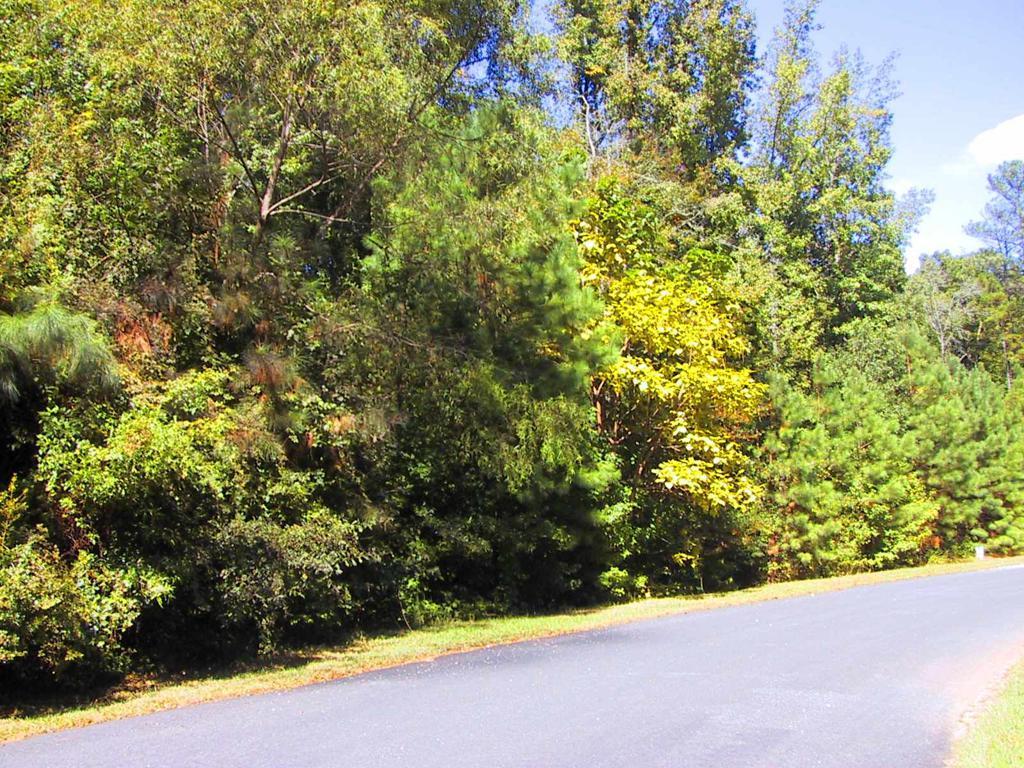 Property for sale at 1181 GRANITE DRIVE, Greensboro,  Georgia 30642