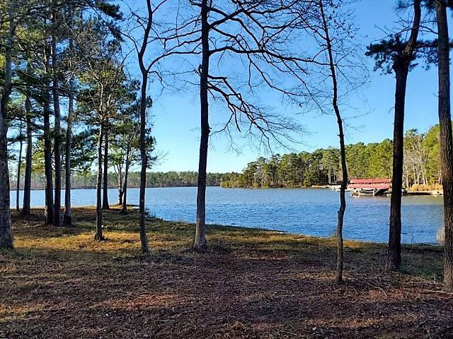 Property for sale at 2070 CLEARWATER DRIVE, White Plains,  Georgia 30678