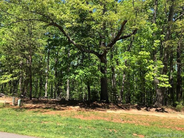 Property for sale at 13216 Sage Thrasher Lane, Charlotte,  North Carolina 28278