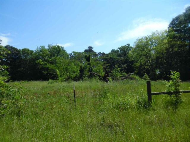 Property for sale at TBD CR 175, Gary,  Texas 75643