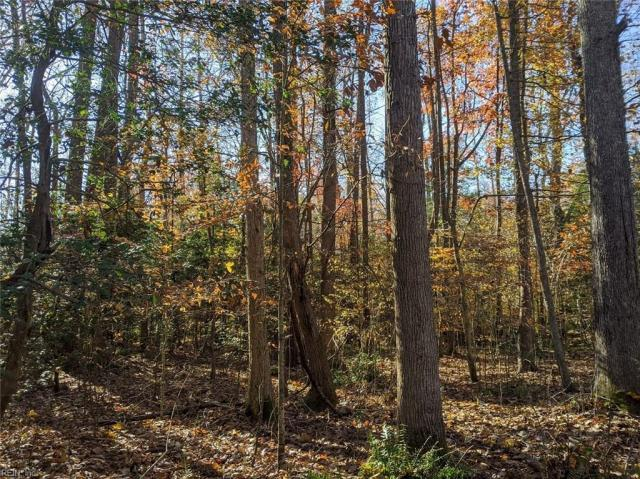 Property for sale at Lt 57 Spring Branch Drive, North,  Virginia 23128