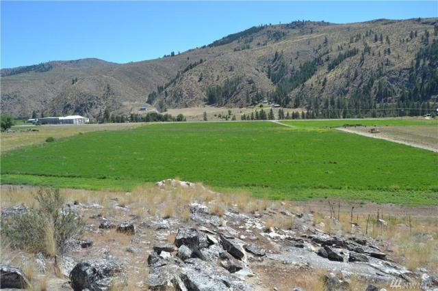 Property for sale at 0 Hwy 153, Methow,  WA 98834